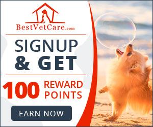Image for BestVetCare.com Rewards Points