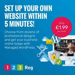 Image for Managed WordPress Option 1 250x250