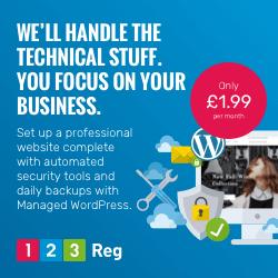 Image for Managed WordPress Option 3 250x250