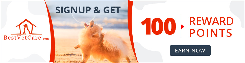 Are You Ready for Rewards? Collect 100 Points + 20% OFF Coupon & Free Shipping Sitewide. Sign Up Now