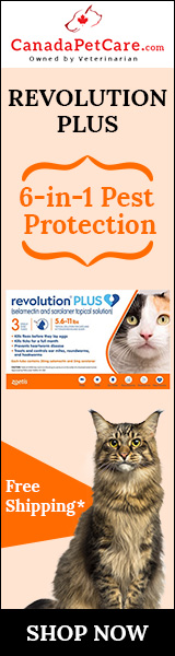 Revolution Plus for Cats Has Arrived! Buy now at Lowest Price Today + Free Shipping! Use Code:SAVE12