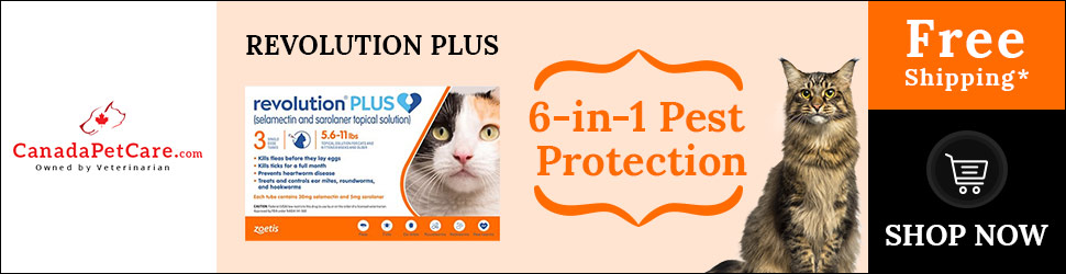 Buy All New Revolution Plus for Cats with exiting new 12% discount + Free Shipping!Use Code: SAVE12K
