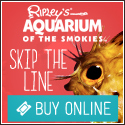 Don't Stand in Line! Buy Tickets to Ripley's Aquarium of the Smokies Online
