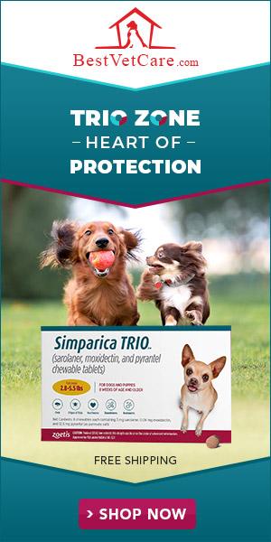 Best Vet Care - Simparica trio 2020