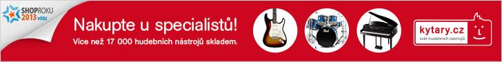 Podle čeho vybírat kytaru