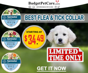 Seresto Flea and Tick Collar Sale