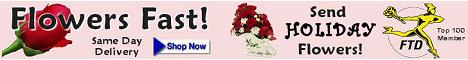 Send Holiday Flowers - Flowers Fast Online Florist