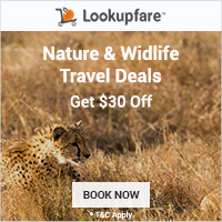 Nature and Wildlife Travel