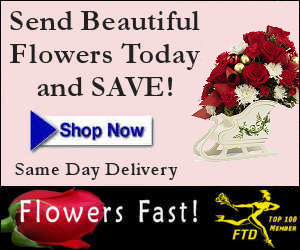 Send Holiday Flowers - Flowers Fast Online Florist