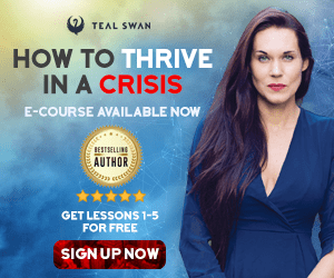 Teal Swan How To Thrive In A Crisis 300x250