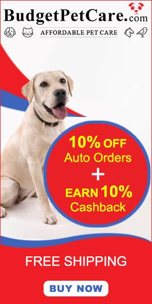 Instant 10% Cashback