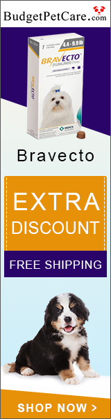 Grab 1 Free Chew of Bravecto + Extra 5% Off & Free Shipping Sitewide
