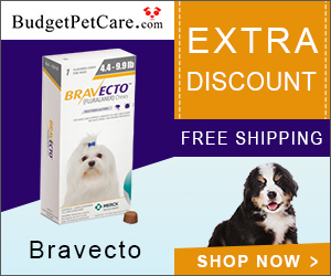 Bravecto @35.96, 12-Week Flea & Tick Protection + Extra 5% Off & Free Shipping