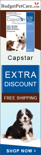 Buy Capstar Flea Treatment Tablets @ 5% Extra Discount + Free Shipping