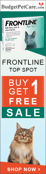 Buy 1 Get 1 Free Frontline Top Spot Cats + 5% Extra Off & Free Shipping
