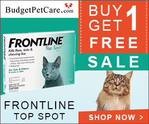 INOpets.com Anything for Pets Parents & Their Pets Frontline for Cats: Buy 4 Get 4 Doses Free + Extra Discount & Free Shipping