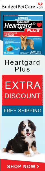 Buy Heartgard Plus Chewables for Dogs at 5% Extra Discount + Free Shipping