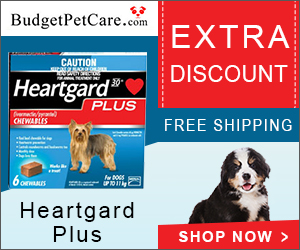 INOpets.com Anything for Pets Parents & Their Pets Buy Heartgard Plus Heartworm Chewables for Dogs with Extra Discount at BudgetPetCare.com