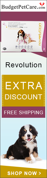 Buy Revolution Flea & Heartworm Treatment for Dogs at 5% Extra Off + Free Shipping