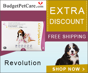 Online Revolution For Dogs with 5% Extra Off & Free Shipping at BudgetPetCare.com