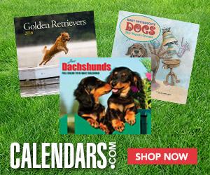 Shop Dachshunds Calendars Now!
