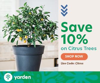 Cirtrus.com: Save 10% on Citrus trees with code CITRUS