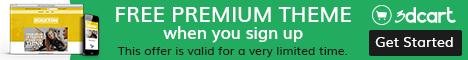 Free Premium Theme with 3Dcart