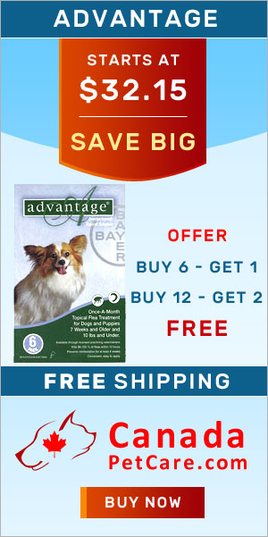 Cheap Advantage For Dogs | Sitewide Free Shipping