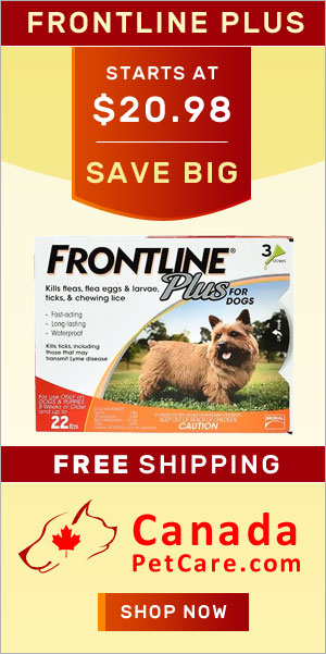 Buy Cheap Frontline Plus Flea Tick Online