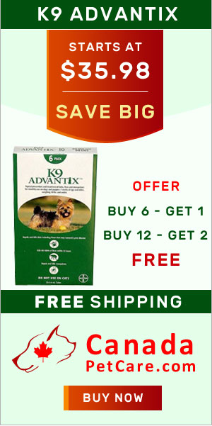 Buy Cheapest K9 Advantix For Dogs Online with Free Shipping