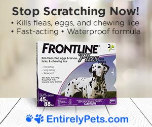 Frontline Plus On Sale Now!