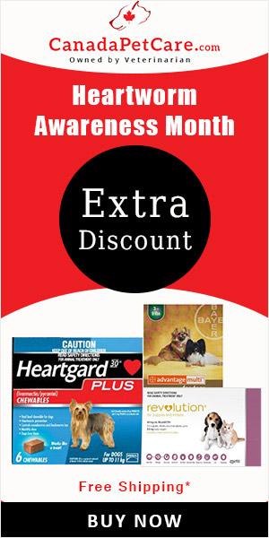 HeartWorm Awareness Month Sale!