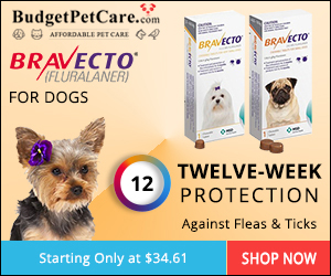 Buy Cheapest Bravecto for Dogs Online