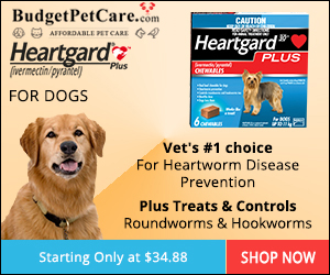 Heartgard Plus Chewables for Dogs Online