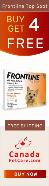 Buy 1 Get 1 Free Frontline Top Spot