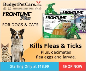 Image for Buy Frontline Plus for Dogs Online