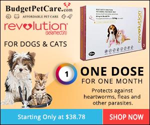 Buy Revolution Flea & Heartworm Treatment