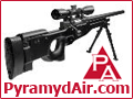 See Airsoft Rifles