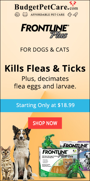 Buy Frontline Plus for Dogs Online