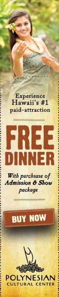 Free Dinner