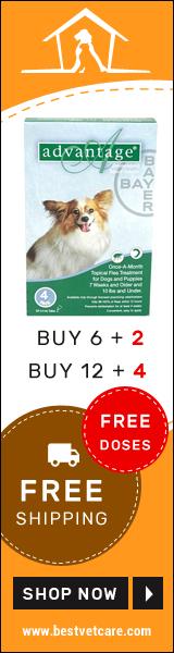 Get Free Doses of Advantage Flea Control Treatment