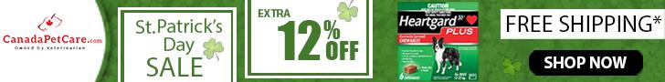 St. Patrick's Day Sale