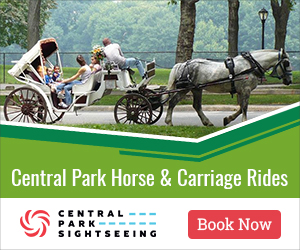 horse and carriage rides