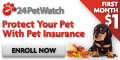 Pet Health Insurance For <BR> Cats & Dogs