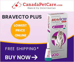 Image for Bravecto Plus for Cats
