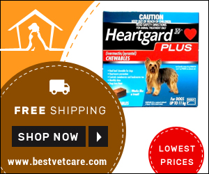 Cheap Heartgard Plus For Dogs