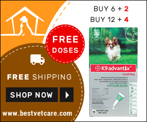 Free Doses of K9 Advantix For Dog