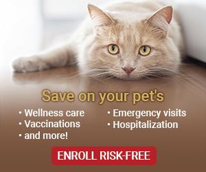 Save on your pets Cat - PetAssure.com