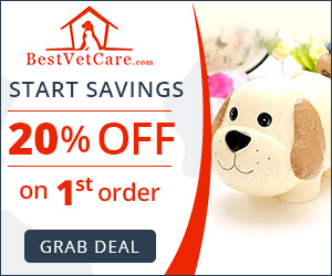 Take 20% Extra Off on First Purchase at BestVetCare.com + Free Shipping