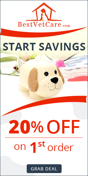 Exclusive Discount for Your First-Time Order at BestVetCare.com! Use Code: BVC1ST